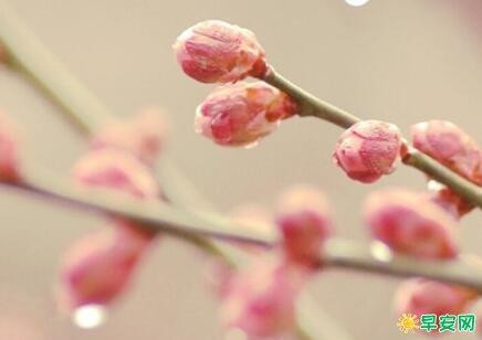 形容春天到來的說說 春天來瞭朋友圈說說