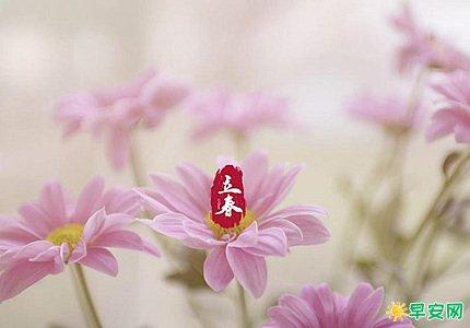立春祝福短句 最美的立春祝福語